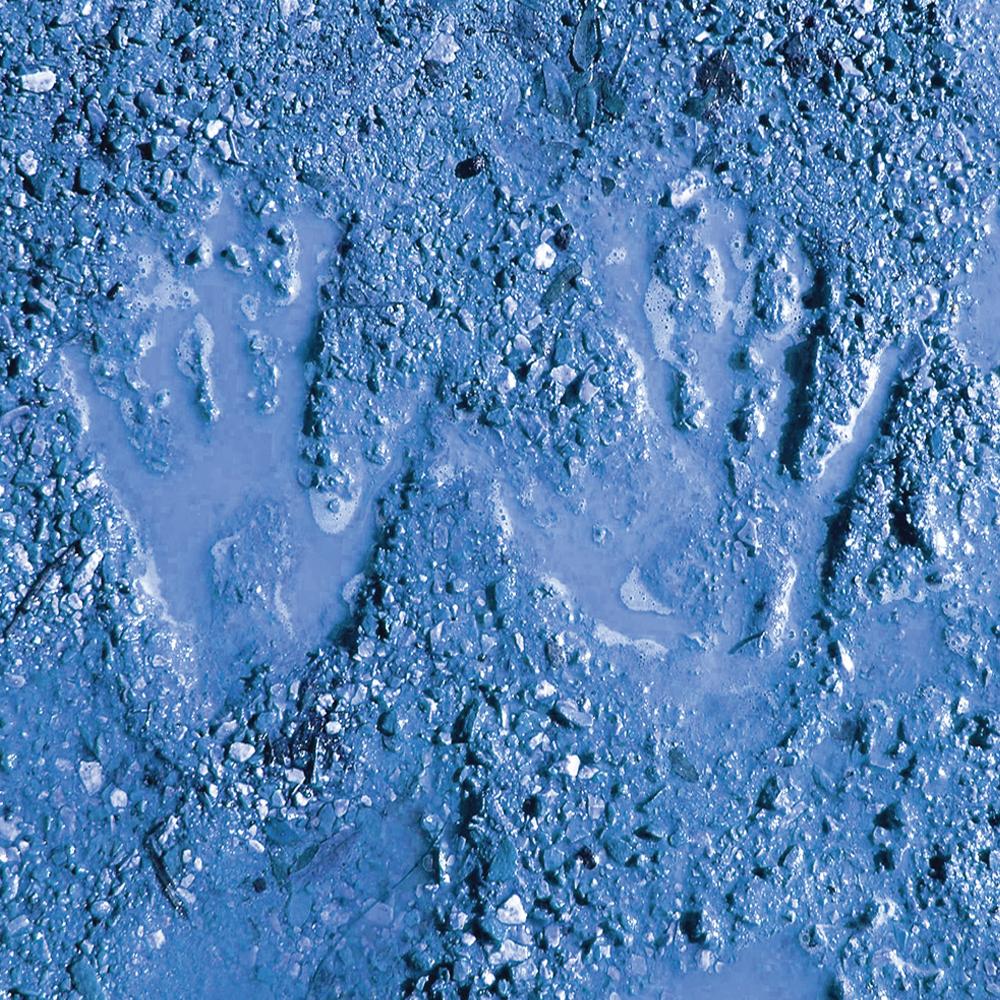 Adam Bodine Trio - Blue Mud