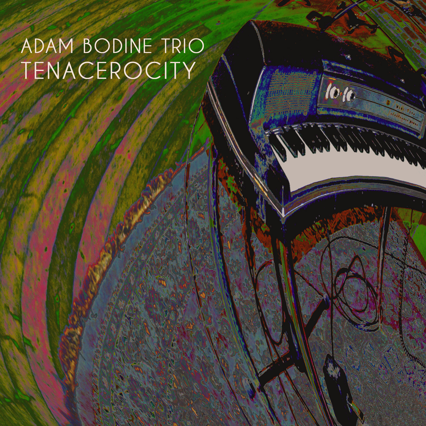 Adam Bodine Trio - Tenacerocity